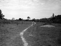 Paths through contaminated land